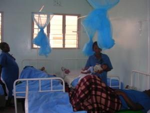 postnatal1